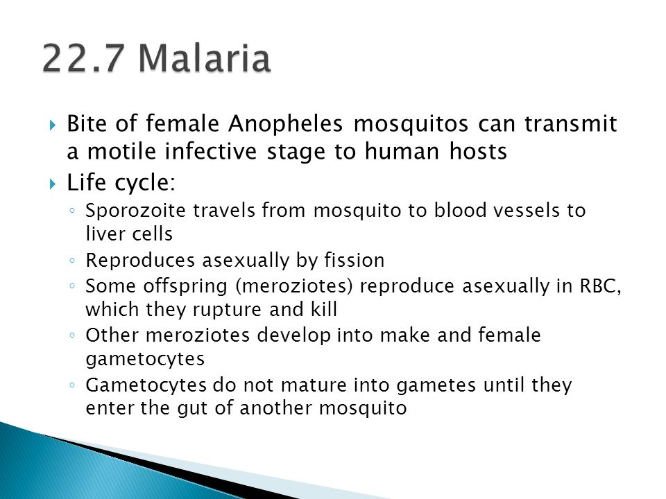 22.7 Malaria Bite of female Anopheles mosquitos can transmit a motile infective stage to human hosts.