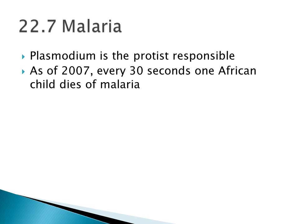 22.7 Malaria Plasmodium is the protist responsible