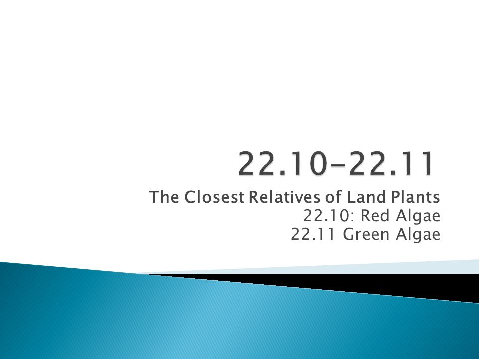 22.10-22.11 The Closest Relatives of Land Plants 22.10: Red Algae