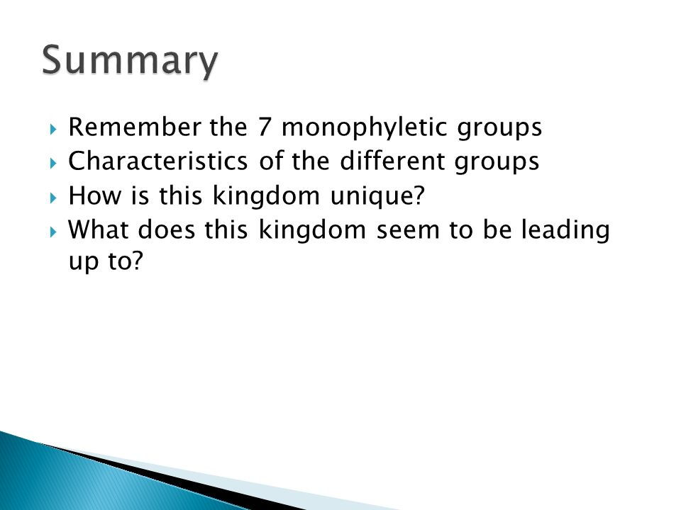 Summary Remember the 7 monophyletic groups