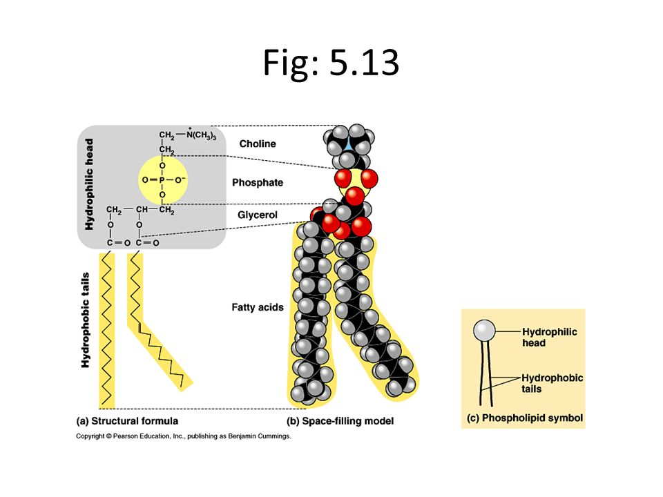 Fig: 5.13