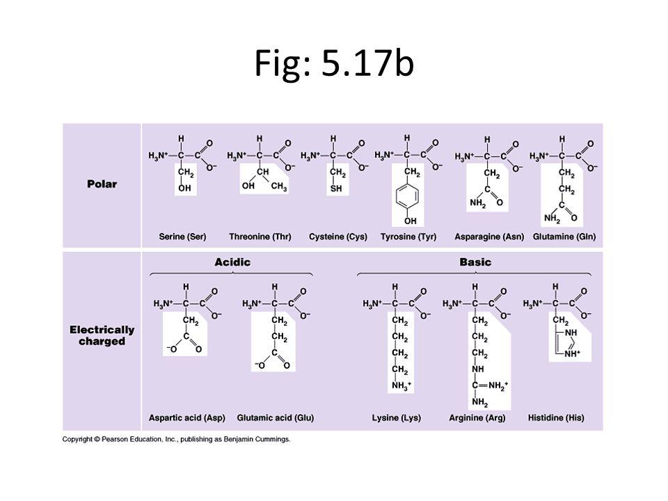 Fig: 5.17b