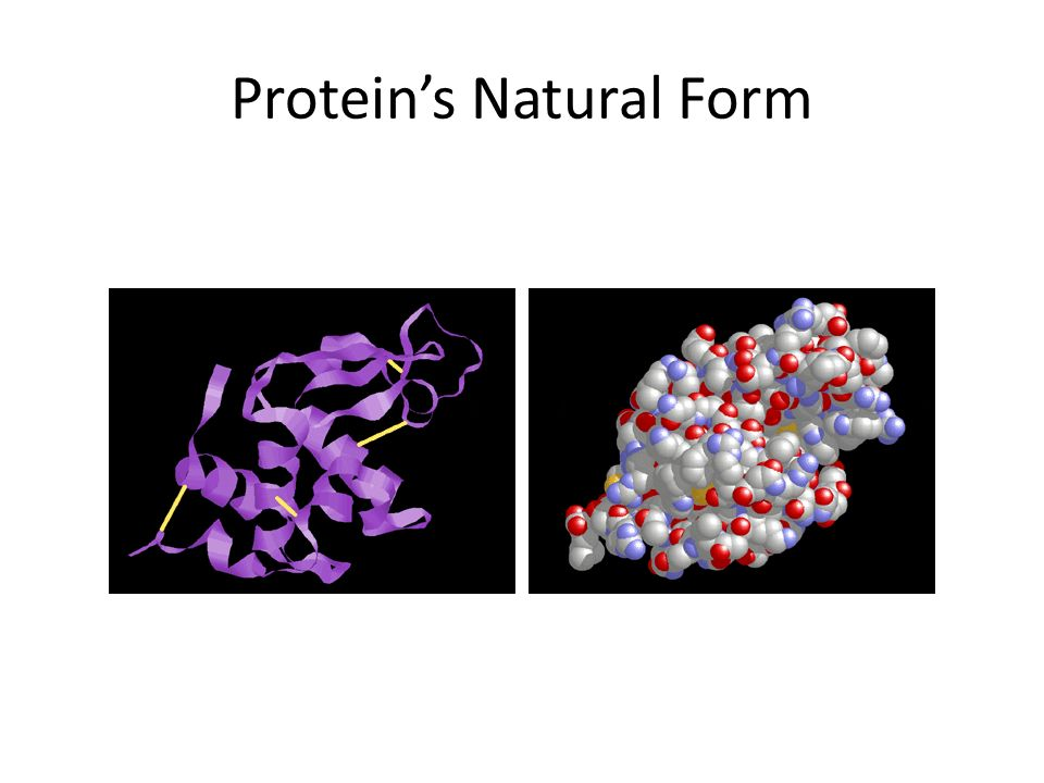 Protein's Natural Form