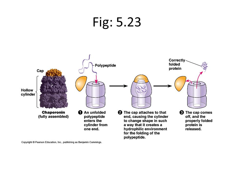 Fig: 5.23