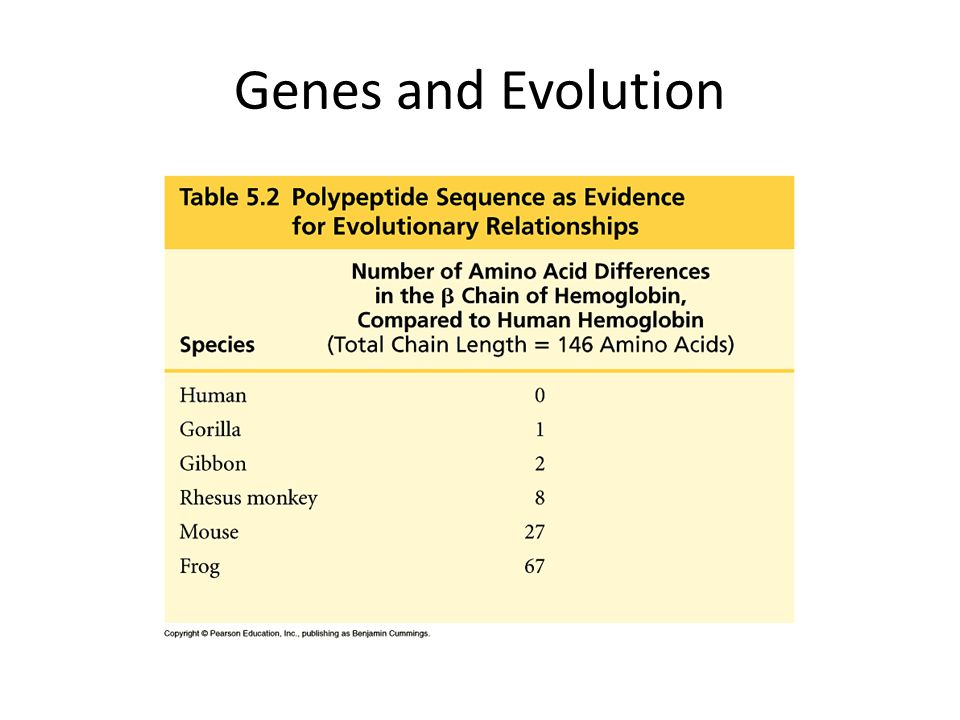 Genes and Evolution