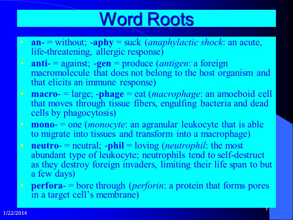 Word Roots an- = without; -aphy = suck (anaphylactic shock: an acute, life-threatening, allergic response)