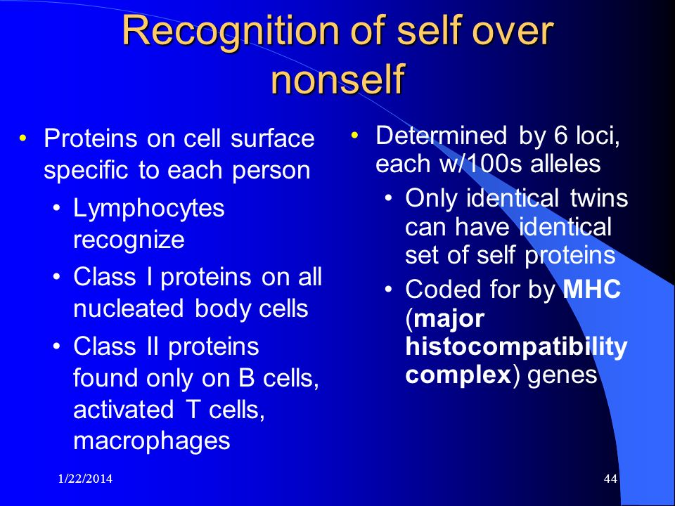 Recognition of self over nonself
