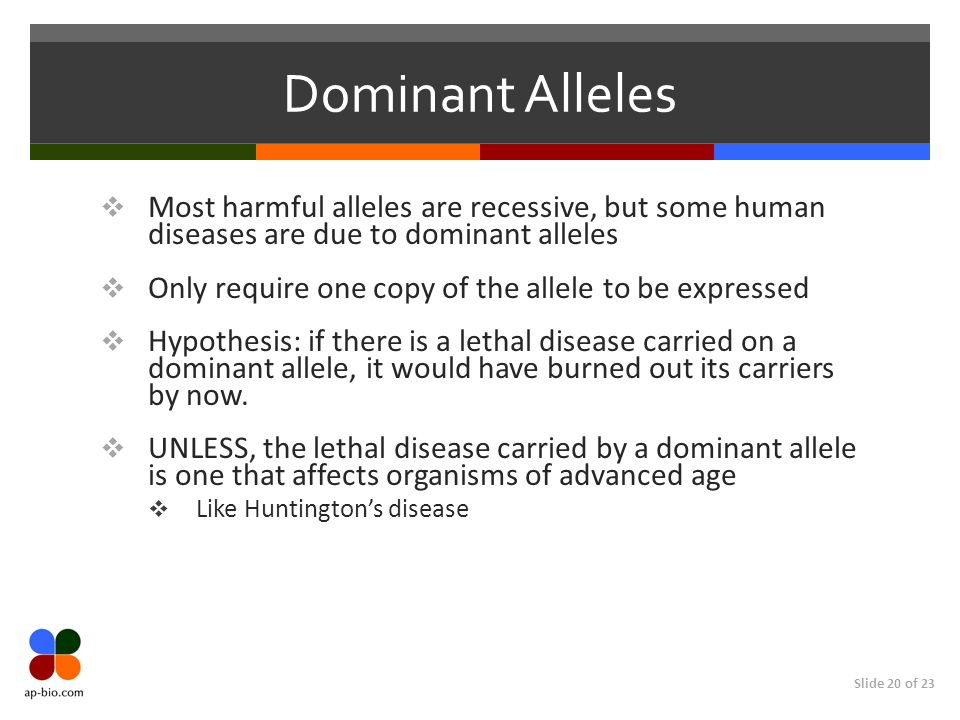 Dominant Alleles Most harmful alleles are recessive, but some human diseases are due to dominant alleles.