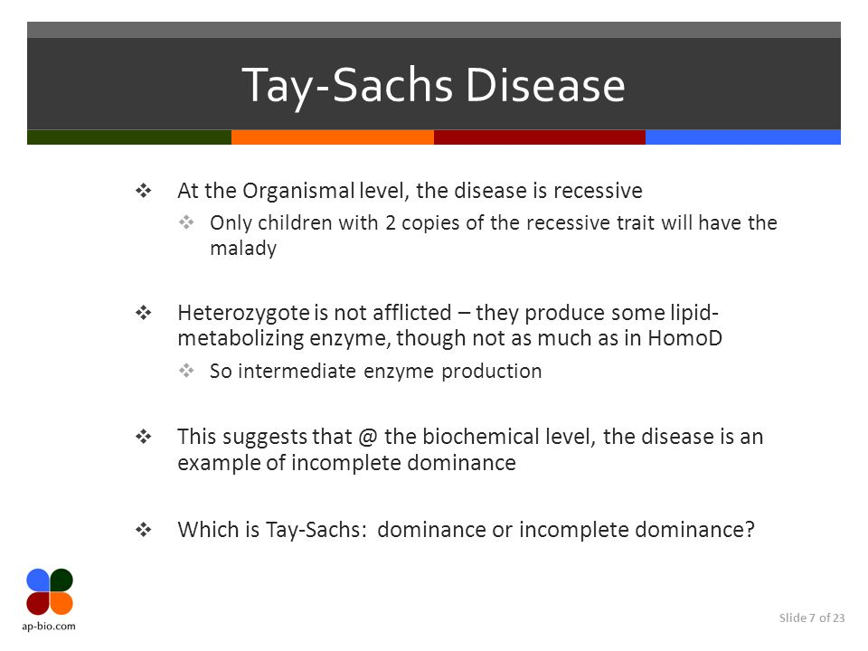 Tay-Sachs Disease At the Organismal level, the disease is recessive