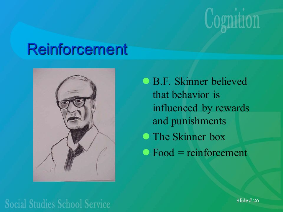 Reinforcement B.F. Skinner believed that behavior is influenced by rewards and punishments. The Skinner box.