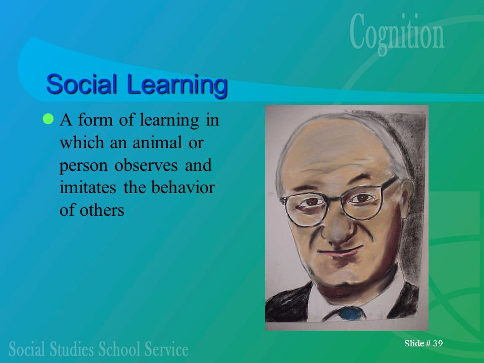 Social Learning A form of learning in which an animal or person observes and imitates the behavior of others.