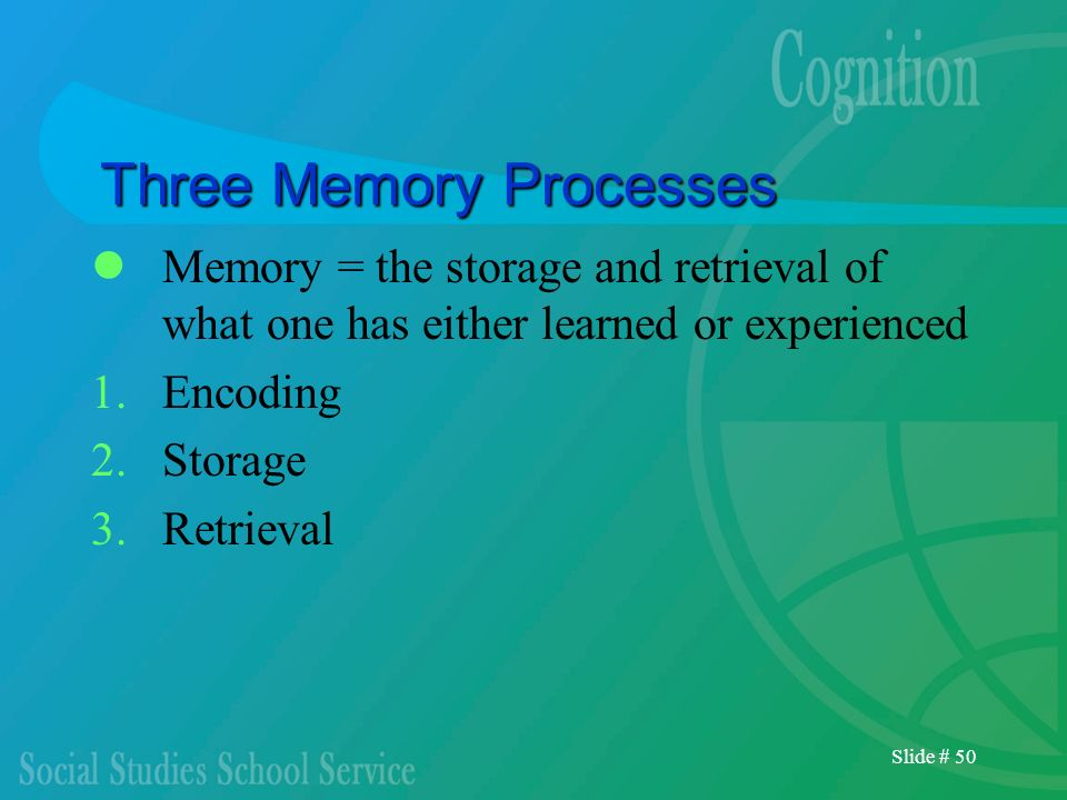 Three Memory Processes