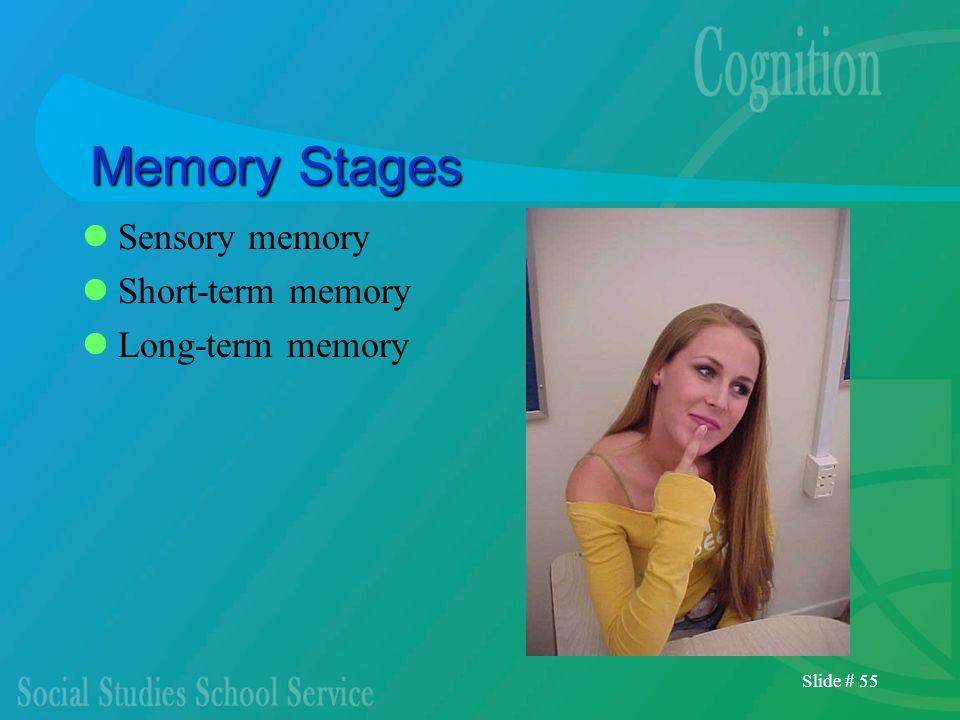 Memory Stages Sensory memory Short-term memory Long-term memory