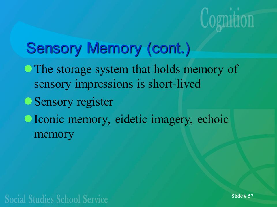 Sensory Memory (cont.) The storage system that holds memory of sensory impressions is short-lived. Sensory register.