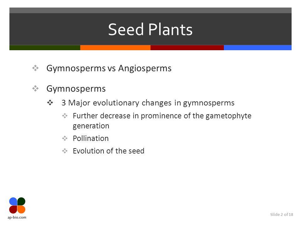 Seed Plants Gymnosperms vs Angiosperms Gymnosperms