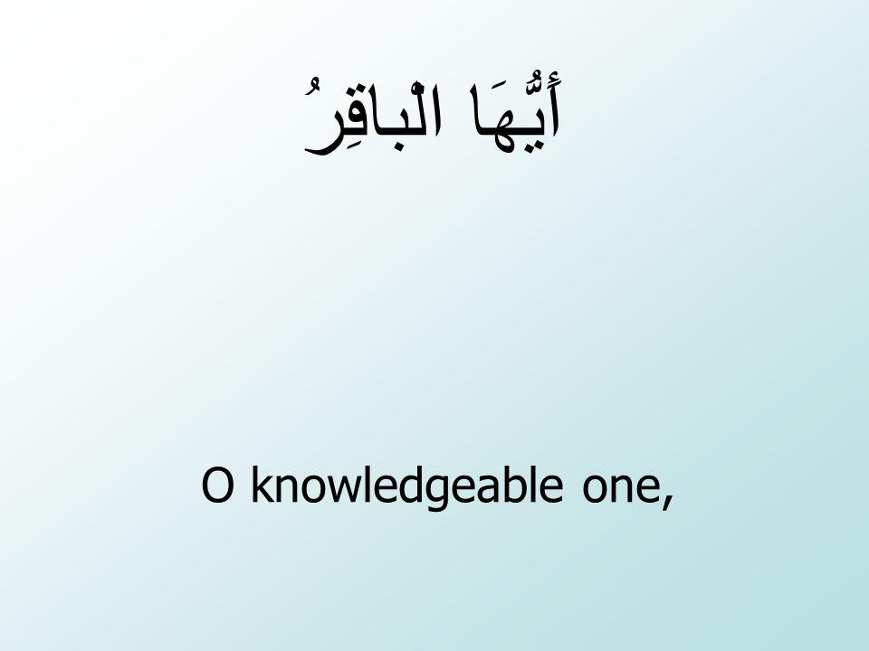 أَيُّهَا الْباقِرُ O knowledgeable one,