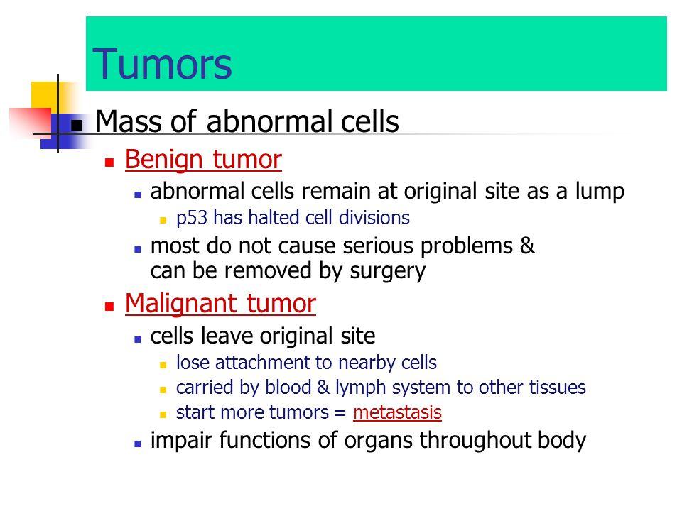 Tumors Mass of abnormal cells Benign tumor Malignant tumor