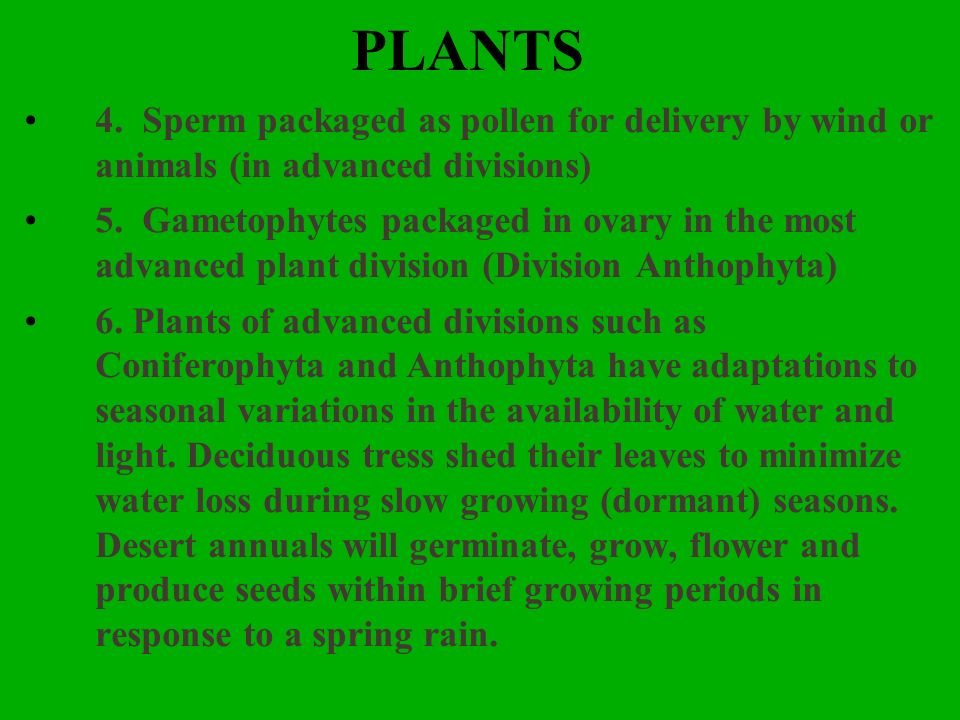 PLANTS4. Sperm packaged as pollen for delivery by wind or animals (in advanced divisions)