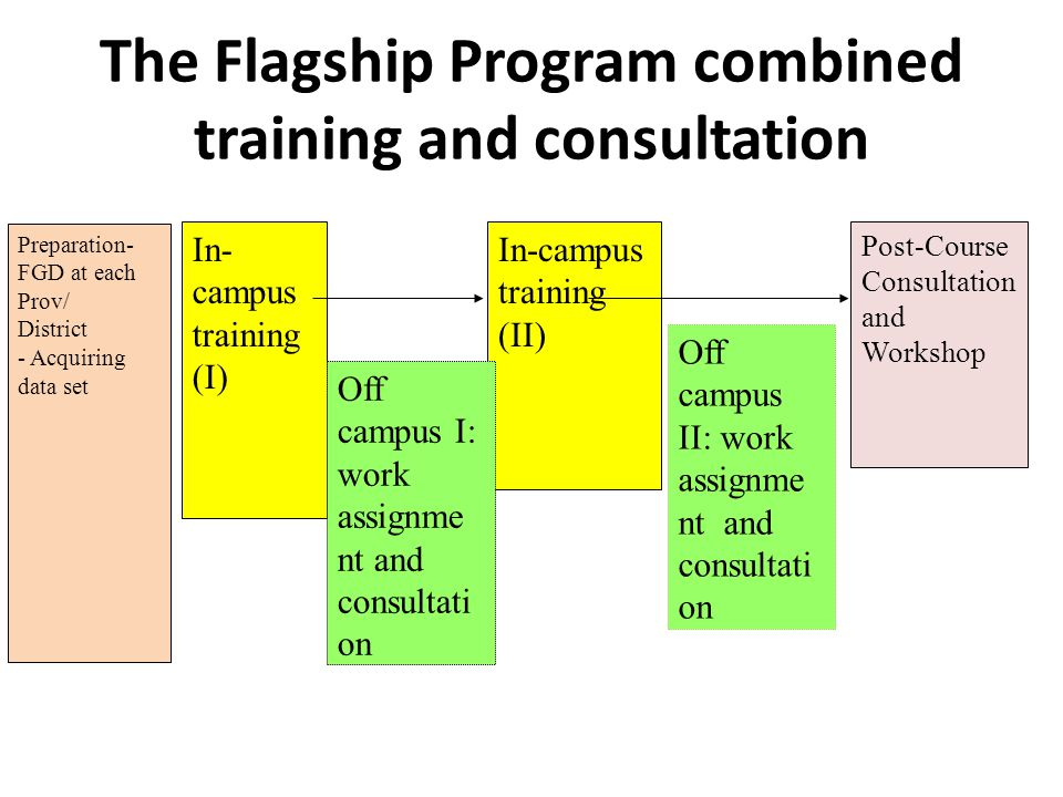 The Flagship Program combined training and consultation