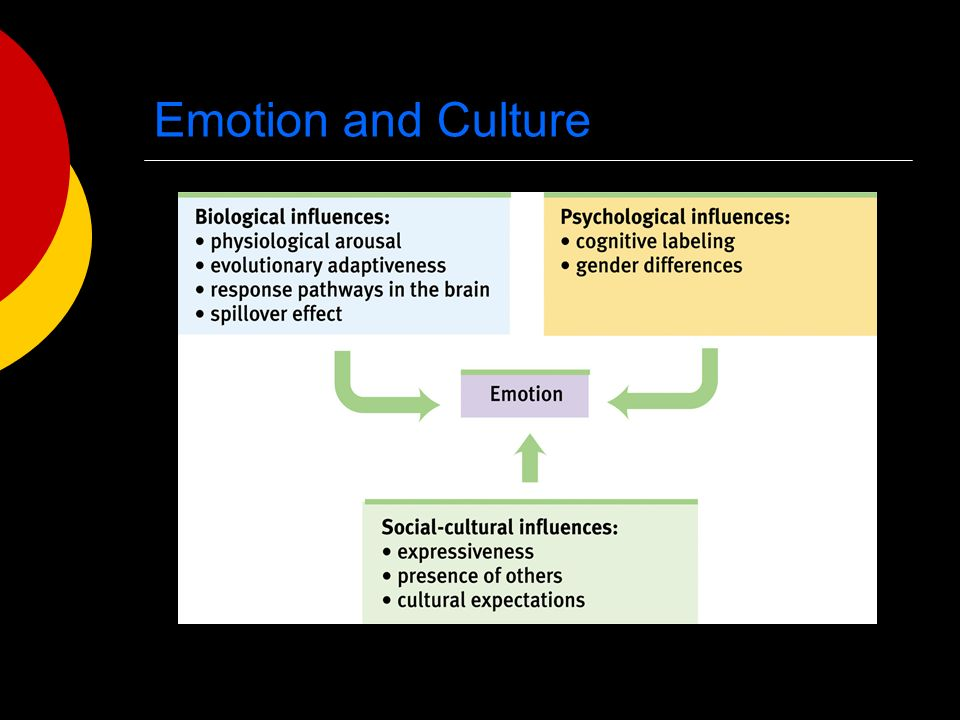 Emotion and Culture