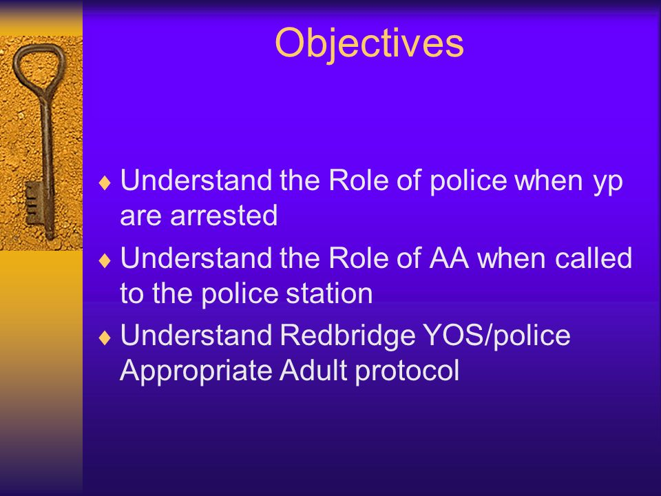 Objectives Understand the Role of police when yp are arrested