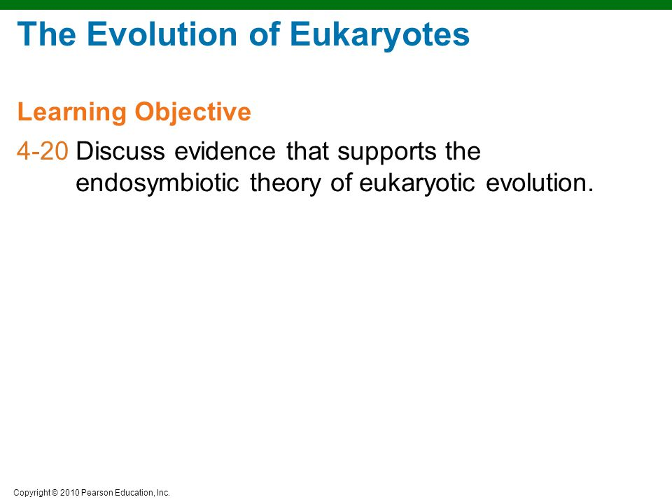 The Evolution of Eukaryotes