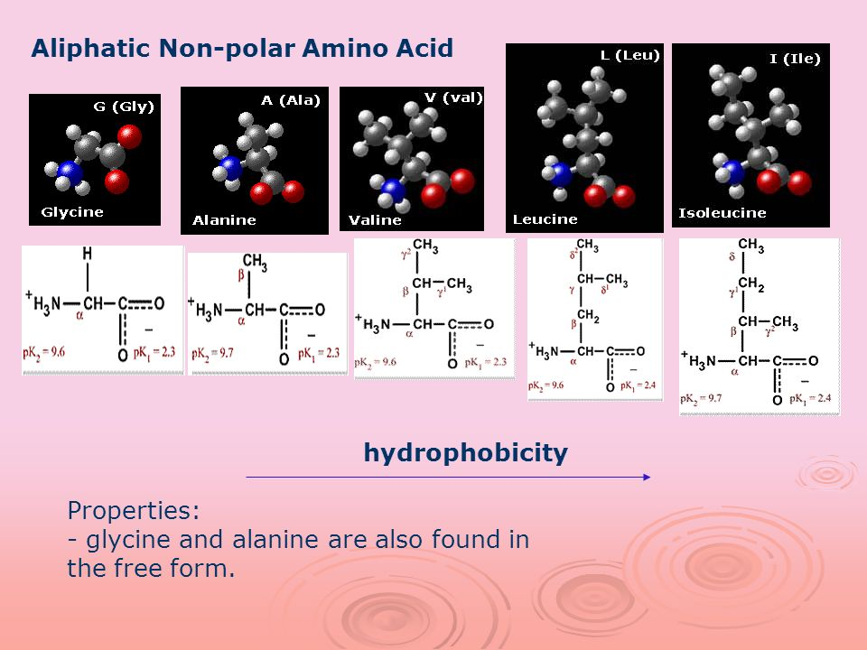 Aliphatic Non-polar Amino Acid