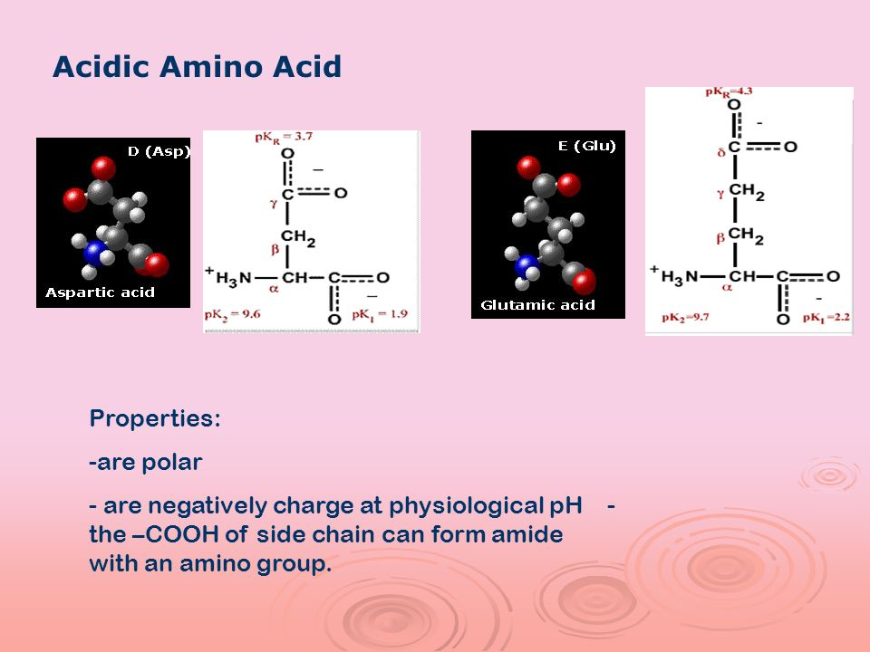 Acidic Amino Acid Properties: are polar