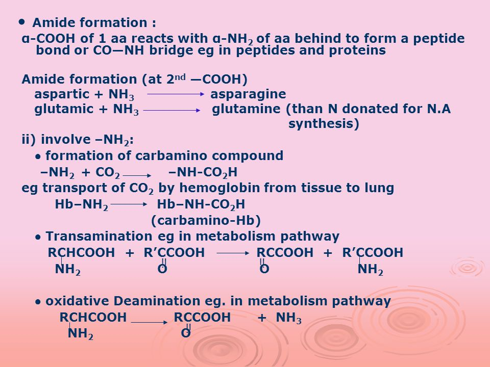 • Amide formation : α-COOH of 1 aa reacts with α-NH2 of aa behind to form a peptide bond or CO—NH bridge eg in peptides and proteins.