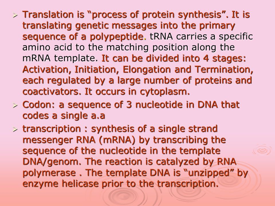 Translation is process of protein synthesis