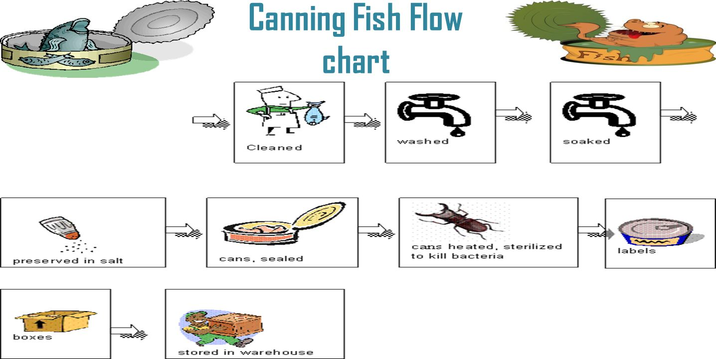 Canning Fish Flow chart