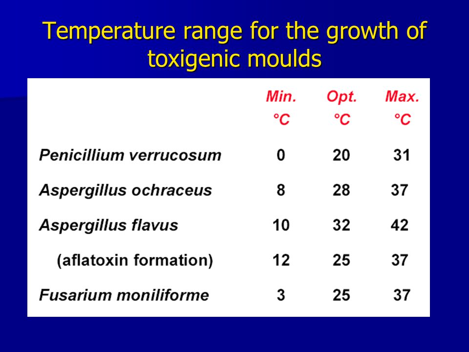 Temperature range for the growth of toxigenic moulds