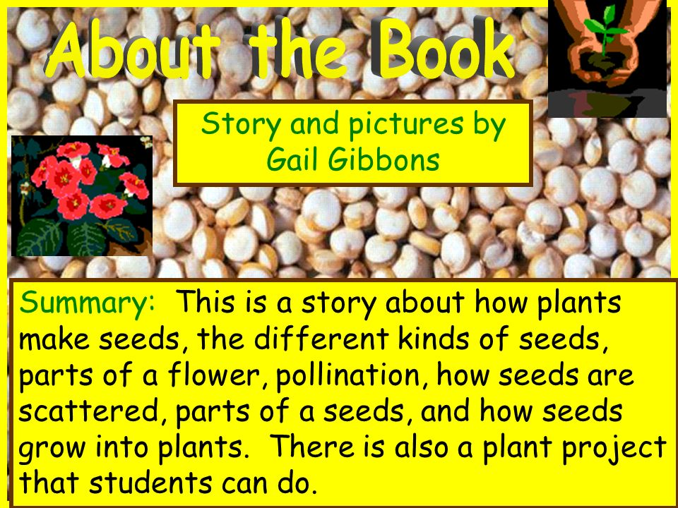 About the Book Story and pictures by Gail Gibbons