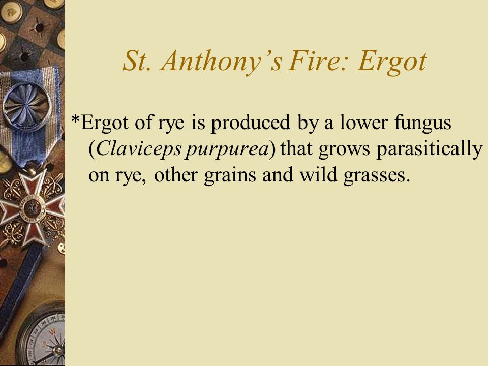 St. Anthony's Fire: Ergot