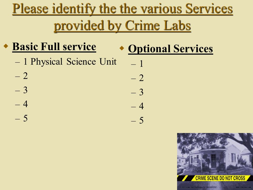Please identify the the various Services provided by Crime Labs