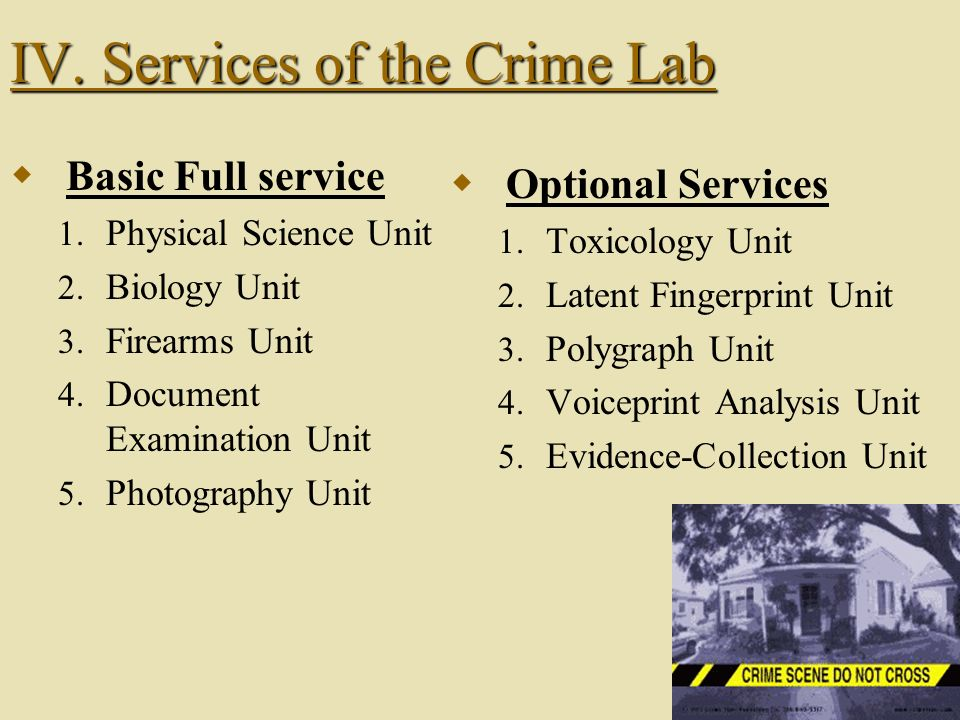 IV. Services of the Crime Lab