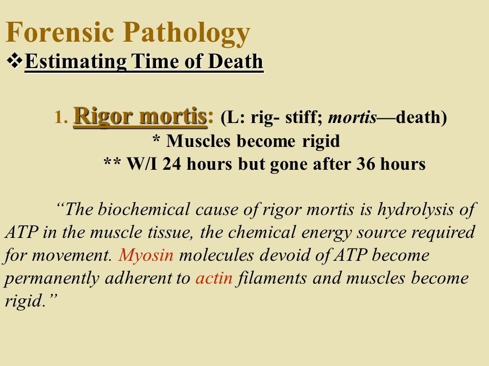 Forensic Pathology Estimating Time of Death
