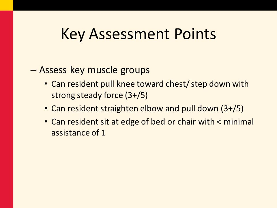 Key Assessment Points Assess key muscle groups
