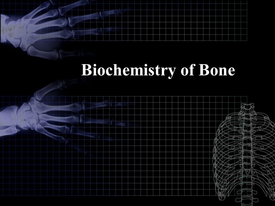 Biochemistry of Bone