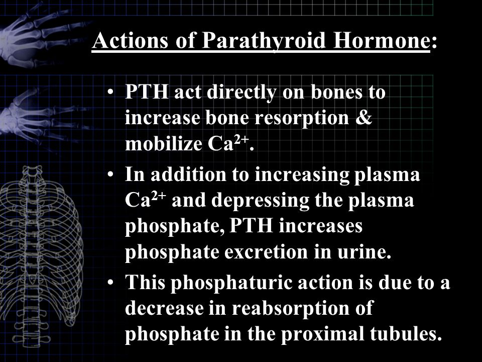 Actions of Parathyroid Hormone: