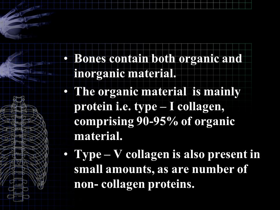 Bones contain both organic and inorganic material.