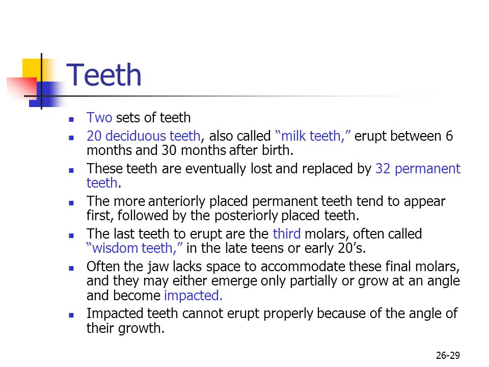 Teeth Two sets of teeth. 20 deciduous teeth, also called milk teeth, erupt between 6 months and 30 months after birth.