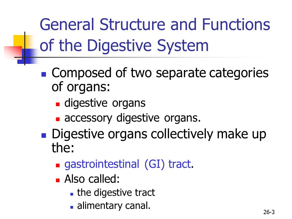 General Structure and Functions of the Digestive System