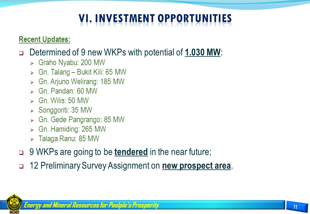 VI. INVESTMENT OPPORTUNITIES
