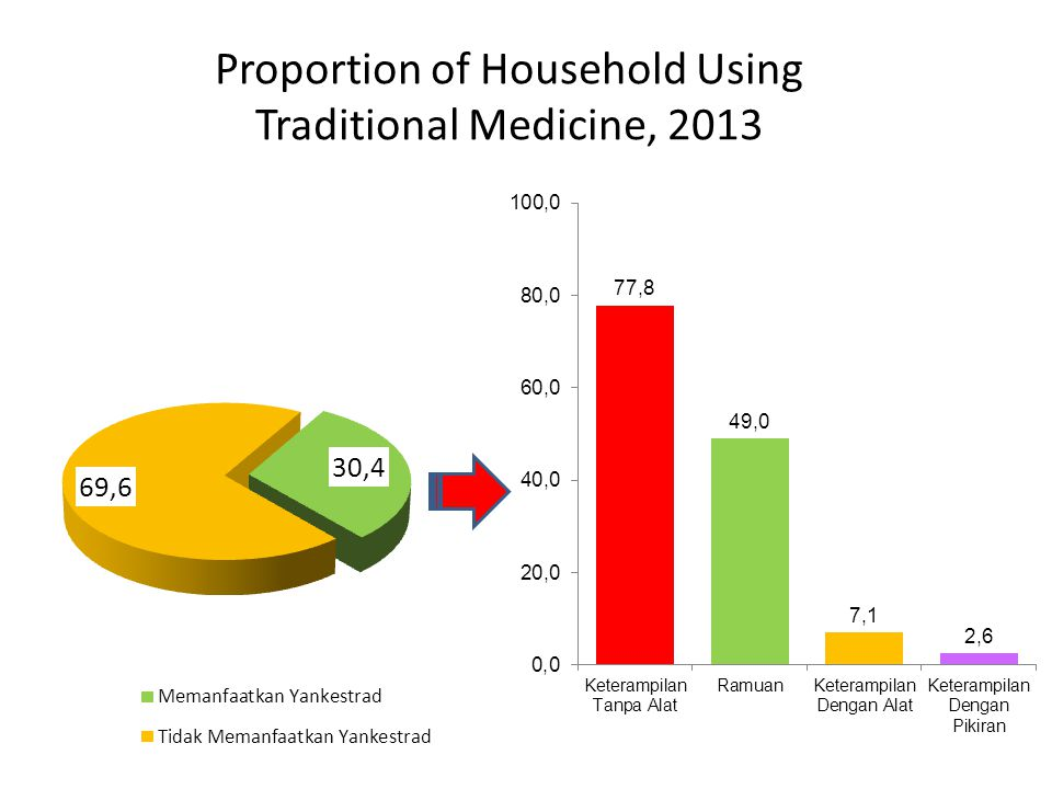 Proportion of Household Using Traditional Medicine, 2013