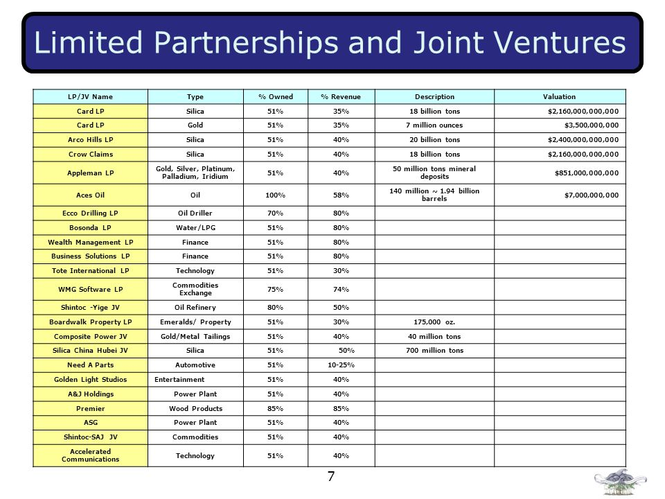 Limited Partnerships and Joint Ventures