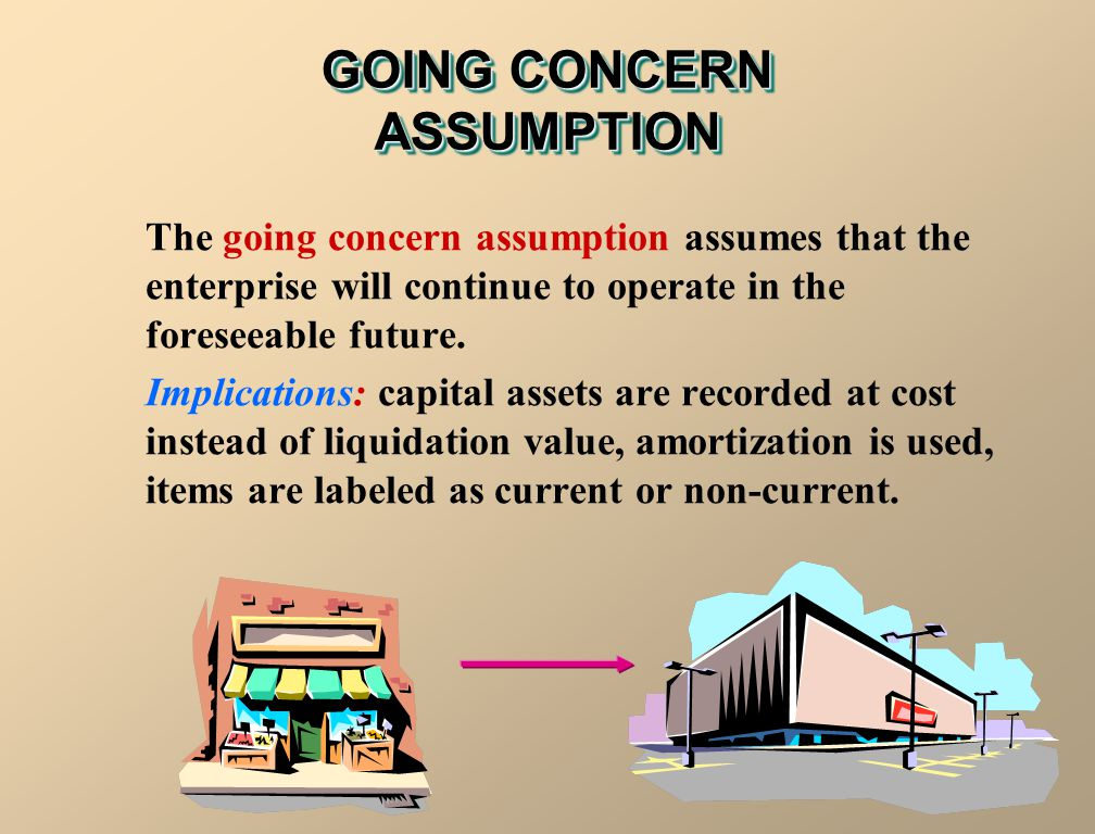 GOING CONCERN ASSUMPTION