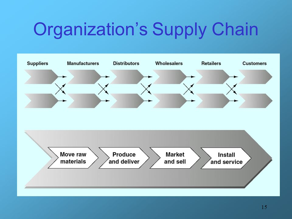 Organization's Supply Chain
