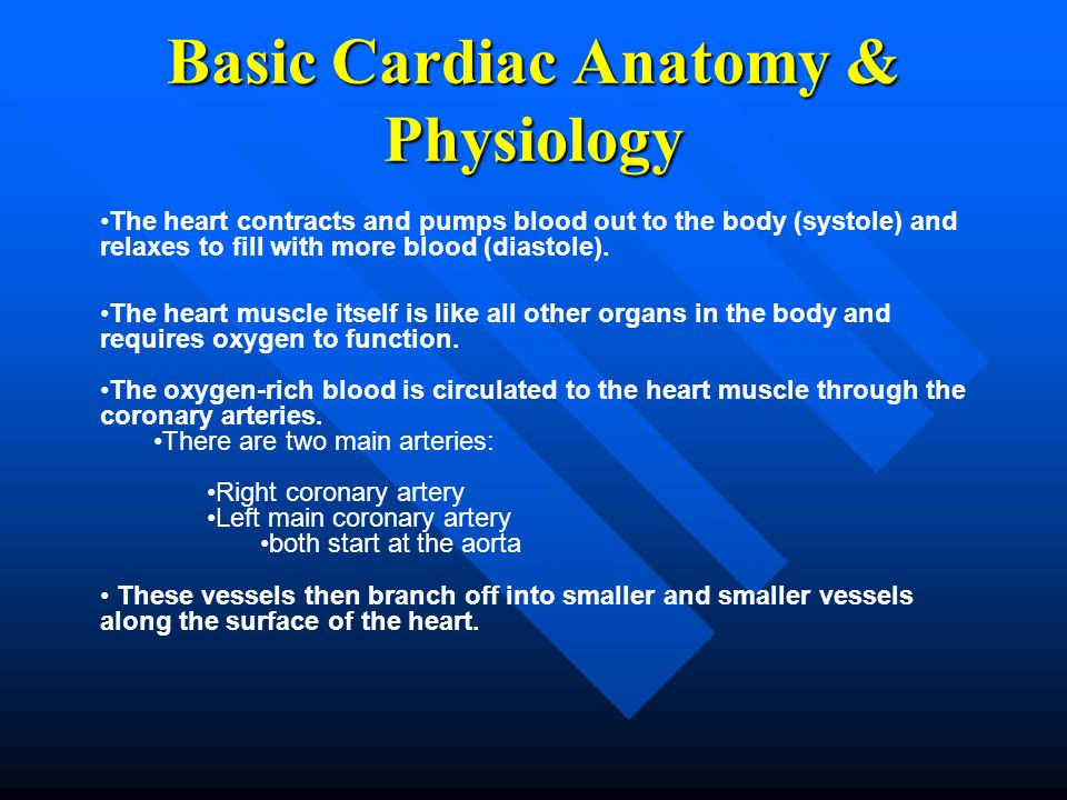 Basic Cardiac Anatomy & Physiology