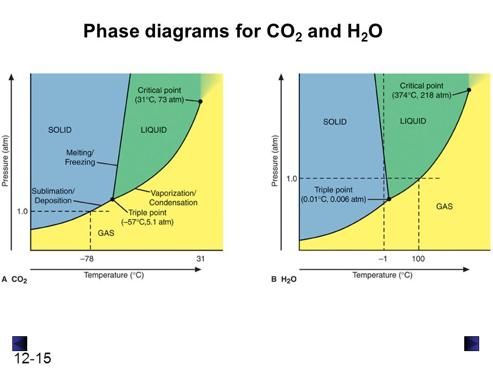 Phase diagrams for CO2 and H2O